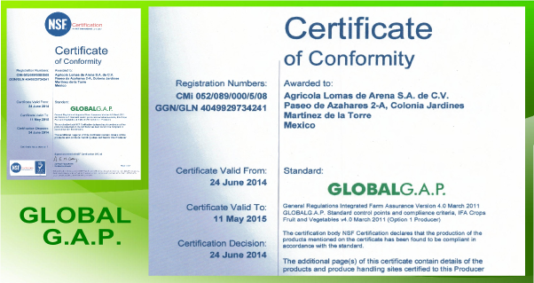 GLOBAL-certificación