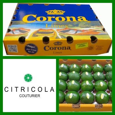corona2.0400x